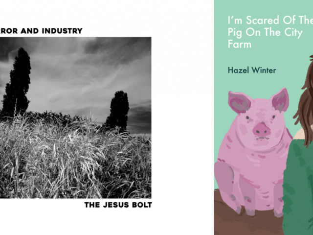 The Jesus Bolt: Error & Industry EP / Hazel Winter: I'm Scared of the Pig on the City Farm: Book – Reviewed