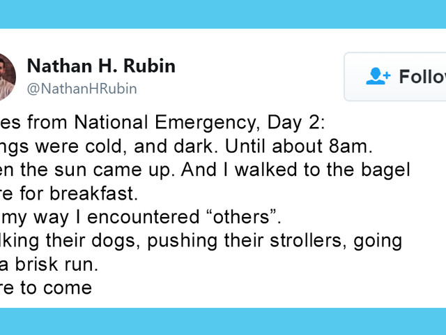 Trump Declares A National Emergency And Twitter Users Are Sharing How They Are 'Surviving'