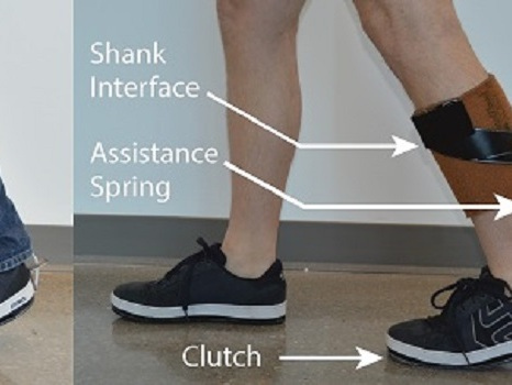 New low-profile ankle exoskeleton fits under clothes for potential broad adoption