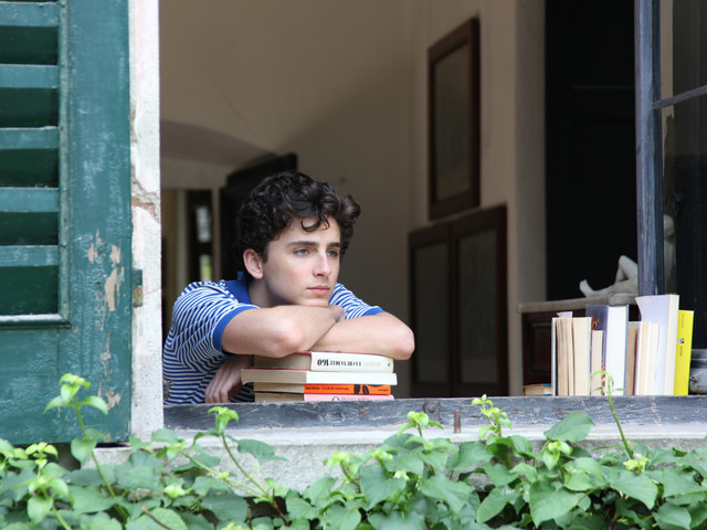 'Call Me by Your Name' Review: Armie Hammer & Timothée Chalamet Astound in Sensual Triumph