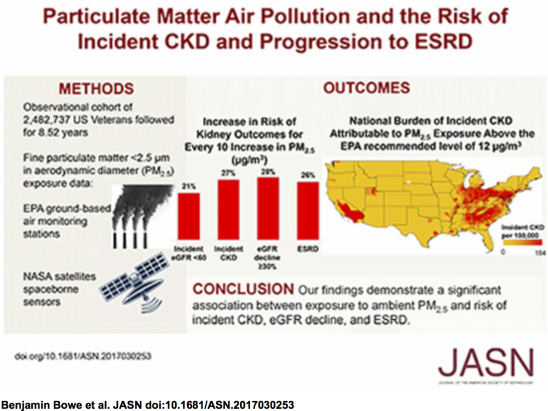 New study suggests PM air pollution damages the kidneys
