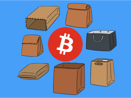 """""""Bitcoins for cash in bags"""" trader gets 12 months in prison"""