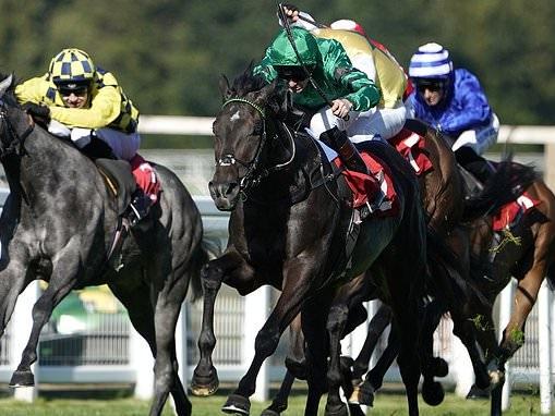 Robin Goodfellow's racing tips: Best bets for Thursday, September 19