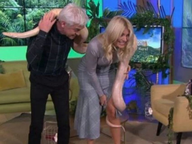 Holly Willoughby Left Squealing After Huge Python Gets Too Close For Comfort On 'This Morning'