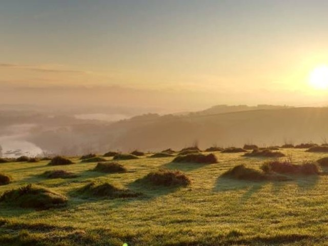 Sharpham Meadow Natural Burial Ground inspires