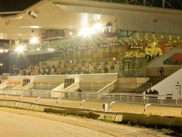 Dundalk betting tips: Peter O'Hehir's selections for Friday's horse racing action