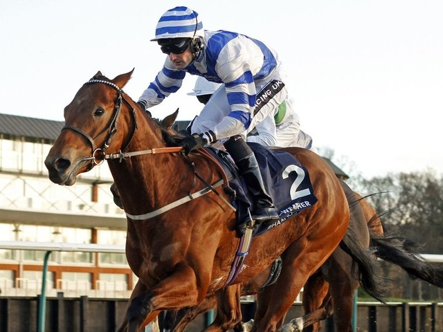 Horse racing tips: Best bets and nap selections for Thursday December 14
