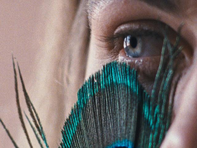 Catarina Vasconcelos on Fictionalized Documentary 'The Metamorphosis of Birds'