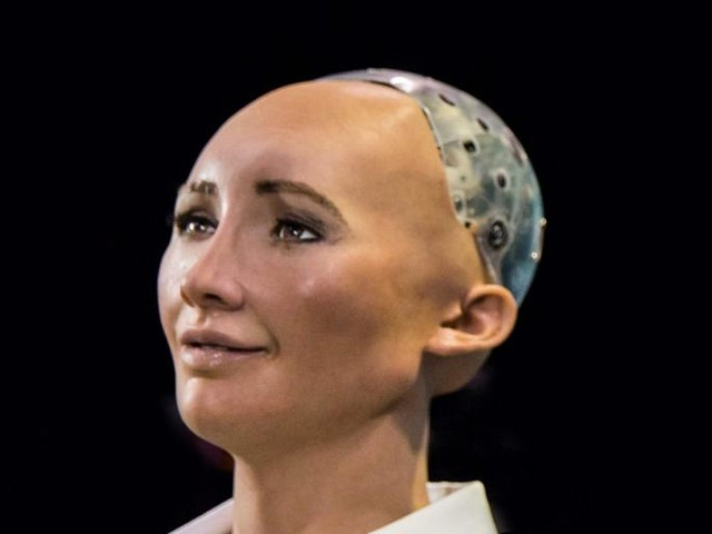 What Exactly Does It Mean to Give a Robot Citizenship?