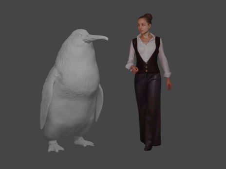 Fossil of nearly human-sized penguin found in New Zealand