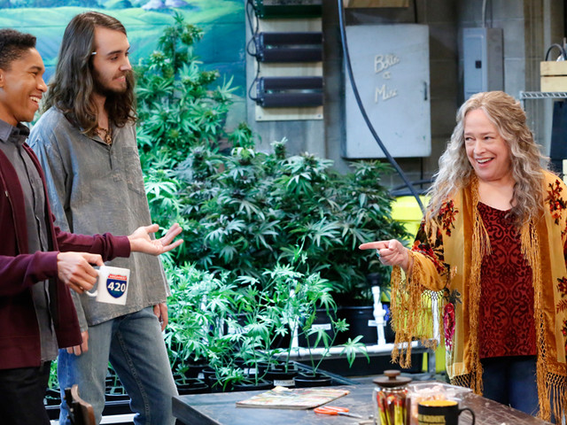 TV Review: 'Disjointed' From Chuck Lorre