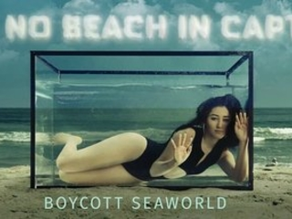 Noah Cyrus Cages Herself On Beach To Call For SeaWorld Boycott