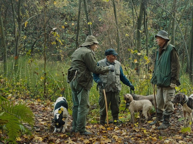 How 'The Truffle Hunters' Turned Dogs Into Cameramen for Documentary