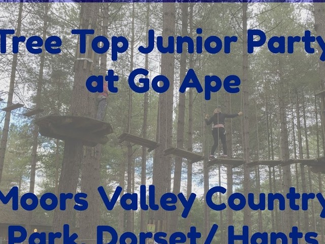 Birthday Party Fun at Go Ape (Moors Valley, Dorset/ Hampshire)