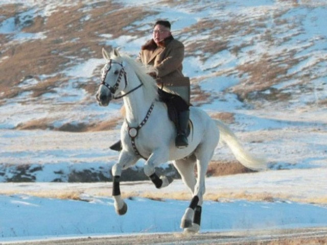 Kim Jong Un rides white horse up sacred mountain