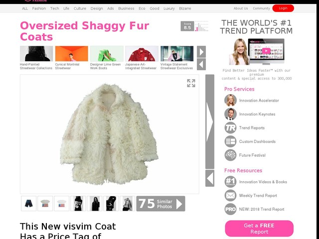 Oversized Shaggy Fur Coats - This New visvim Coat Has a Price Tag of $9,400 USD (TrendHunter.com)