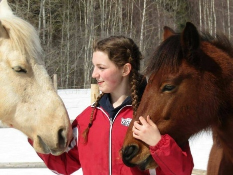 Dutch family takes N.B. village council to court over fight to keep horses