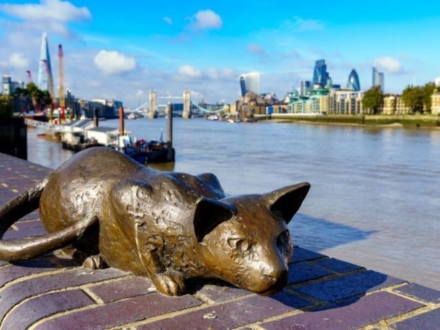 Things To Do Today In London: Friday 18 August 2018