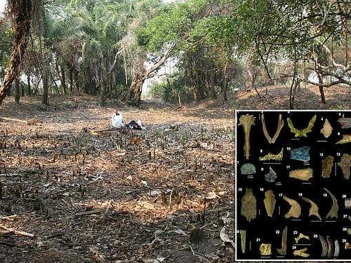 Ancient fish ponds built by humans in the Bolivian savanna helped settlements to survive dry periods