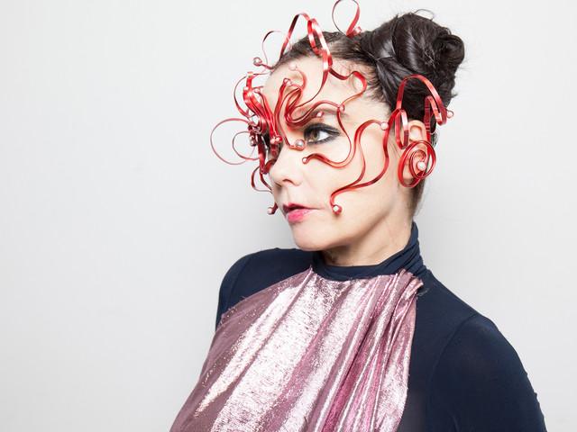 Björk's new album finally has a title