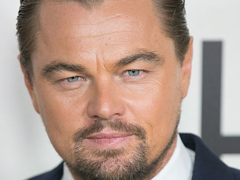 Leonardo DiCaprio Will Play Leonardo da Vinci in an Upcoming Biopic