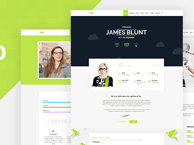 Resume One Page Theme (Business)
