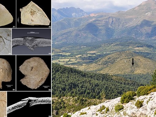 Remains of Neolithic immigrants were brutally executed over territory more than 7,000 years ago