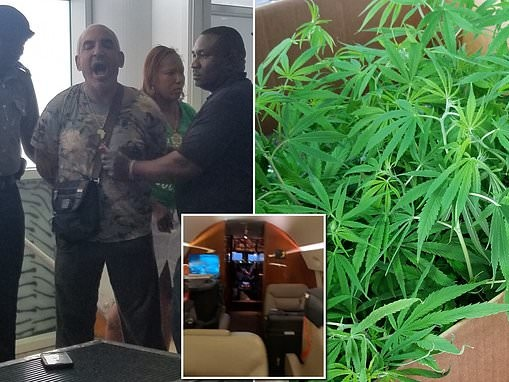 Alki David posts $300,000 bail and flees St Kitts following arrest for $1.3m cannabis plant haul