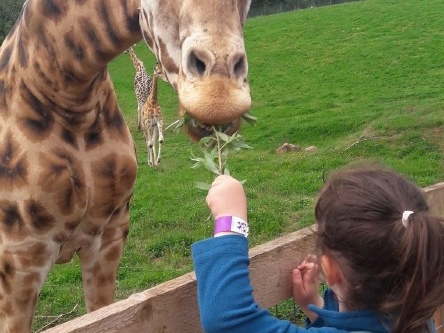 Baby friendly days out in the Lake District: South Lakes Safari Zoo