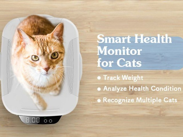 Health-Tracking Feline Scales - The 'WeCare' Smart Cat Health Monitor Analyzes for Conditions (TrendHunter.com)