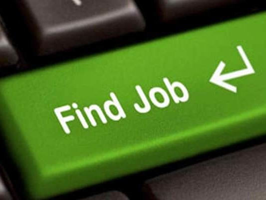 More Than 8 Million Active Job Seekers Against 0.1 Million Jobs On Govt Portal