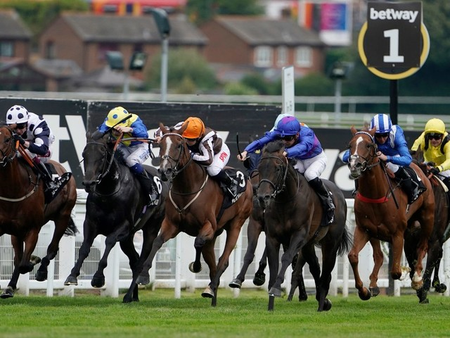 Today's accumulator tips: Dream big with this accumulator on Wednesday at Sandown and Yarmouth