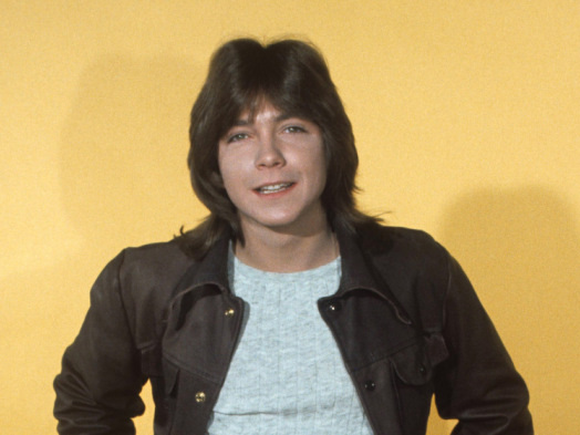 David Cassidy, 'Partridge Family' Star, Dies at 67