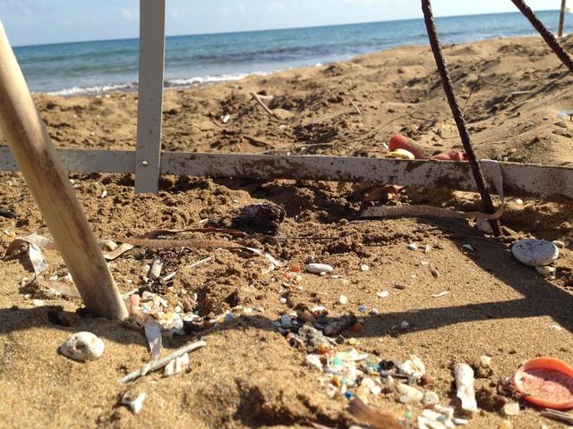 Microplastics found deep in sand where turtles nest