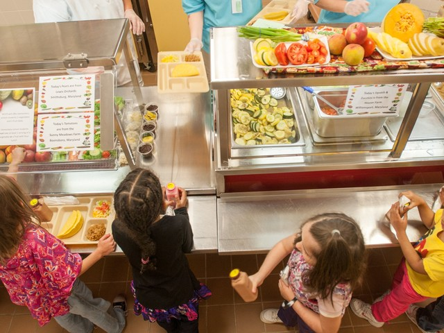 1 in 5 children live below the poverty line: Here are the states with the highest number of kids dependent on free lunches