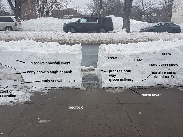 What geologists see after shoveling snow. [1200×635]