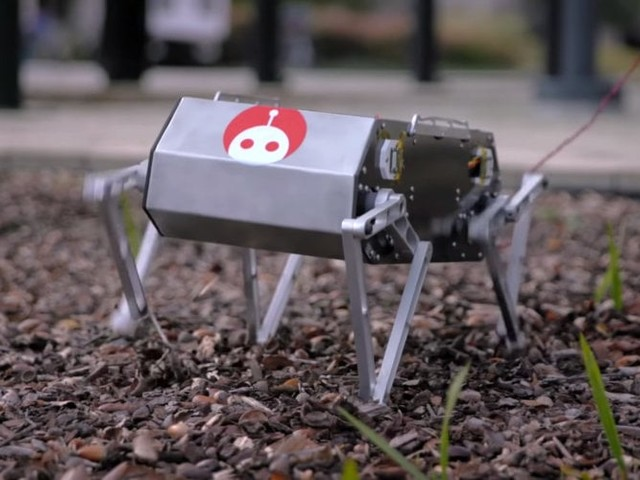 Doggo quadruped robot created by Stanford students