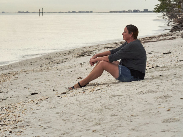 Mediator: News Networks Fall Short on Climate Story as Dolphins Die on the Beach