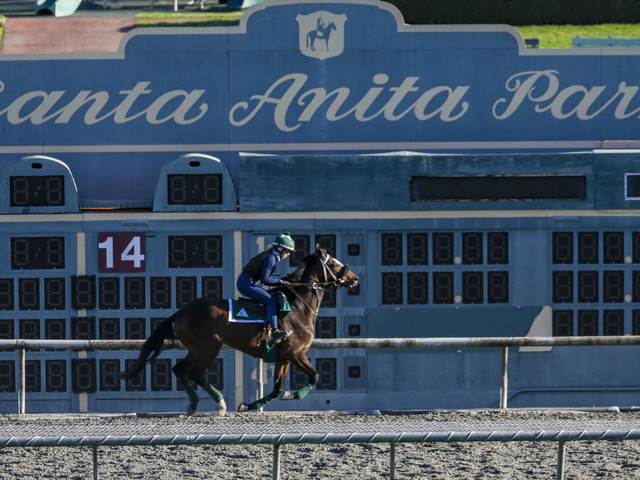 District Attorney Investigating 22 Horse Deaths At California Racetrack