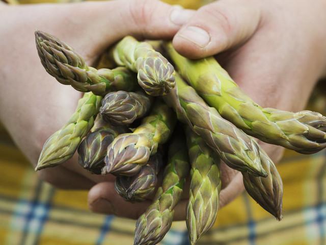 Should I Stop Eating Asparagus To Halt Cancer's Spread?