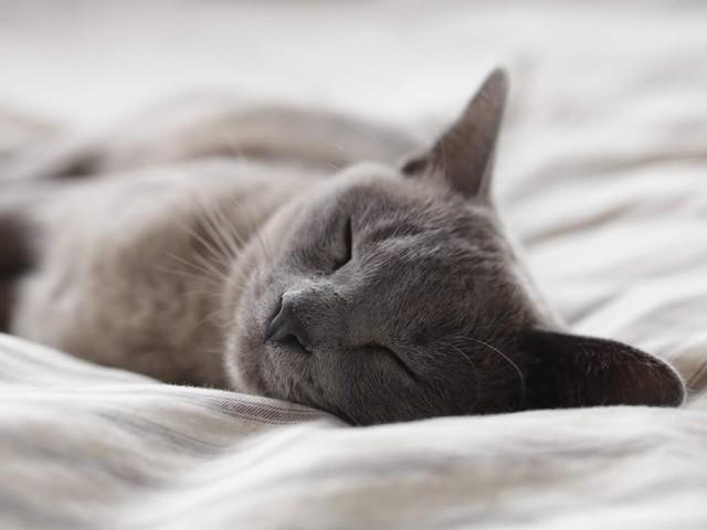 Getting a Better Nights Sleep to Help your Mental Health