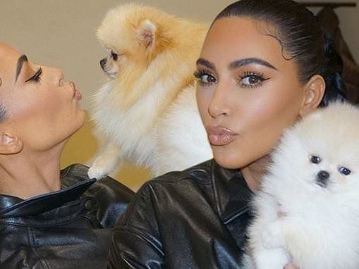 Kim Kardashian is full of puppy love with Sushi and Saké after Forbes disputes billionaire status