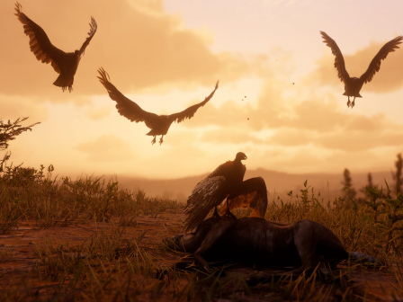 Red Dead Redemption 2 trapper locations – where is the trapper?