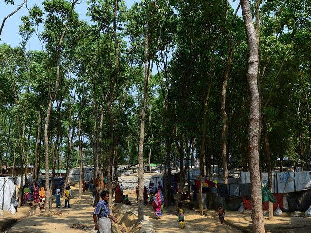 The Rohingya Are Citizens Of Nowhere: The EU Must Be A Strong Voice For Them