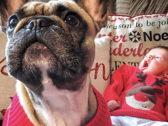 Christmas Jumper Day: Thought Your Sweater Was The Best? Look At These
