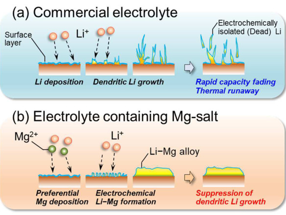 Researchers use magnesium salt electrolyte additive to suppress growth of Li dendrites; more work needed to enhance Coulombic efficiency