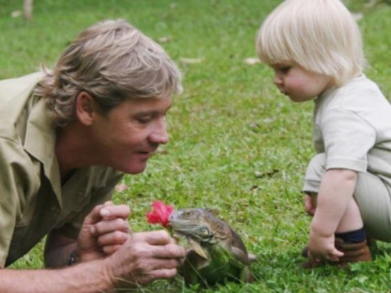 What This Kid's Up To Now Would Make Dad Steve Irwin So Proud