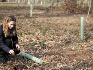IEMA debuts digital environmental impact assessment primer