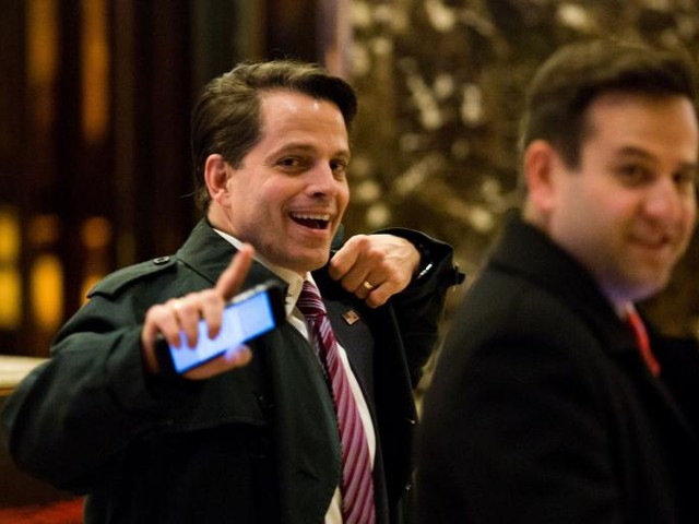 Anthony Scaramucci Loves All of You, Even You Hacks in the Press