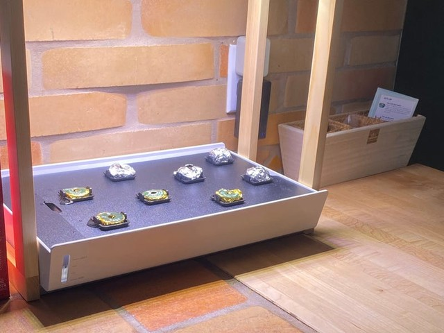 This countertop garden is the best way to grow produce if you live in a small space